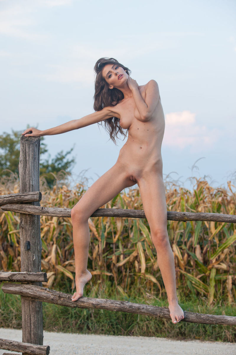 Erotic photos with Sunshine A: On the farm